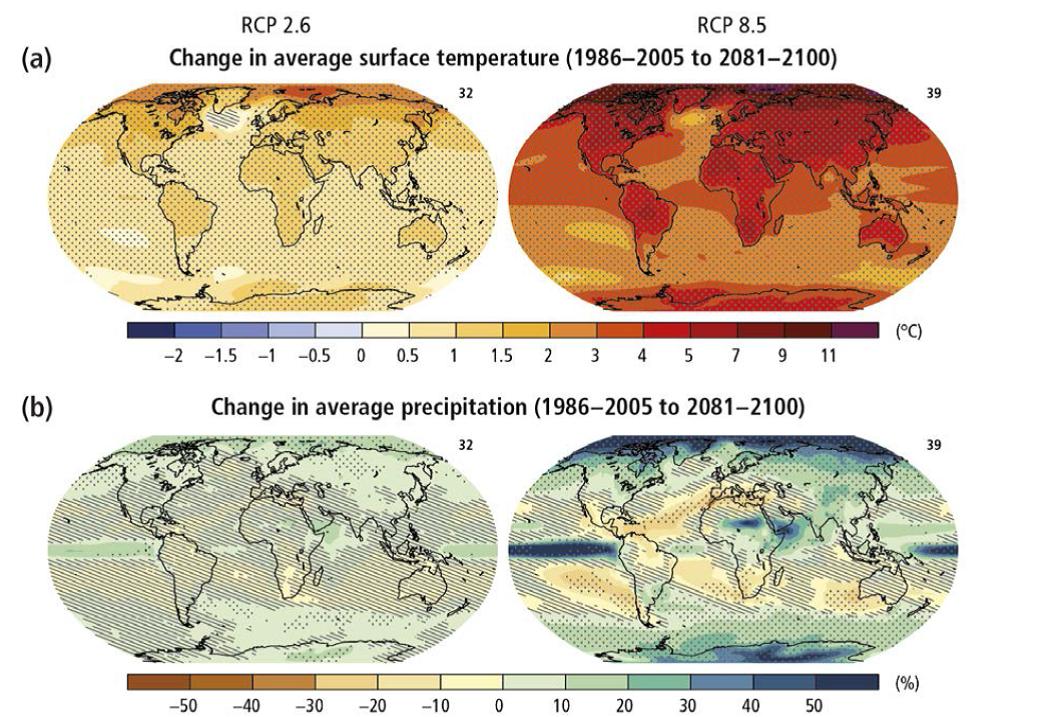 Proiezioni temperature e precipitazione su scala globale