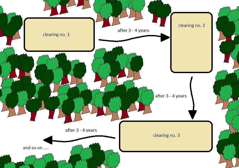 Schematizzazione dell'agricoltura itinerante