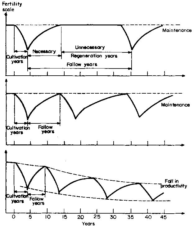 Durata del periodo coltivazione - incolto e produttività