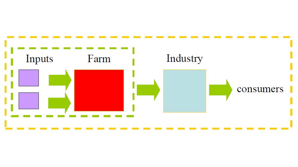 Confini del sistema analizzato per la valutazione LCA per la produzione di farina di mais