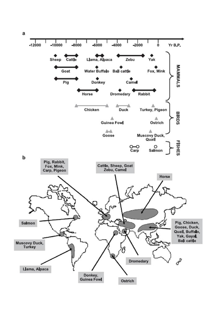 Cronologia (a) e localizzazione (b) della domesticazione delle principali specie di interesse zootecnico