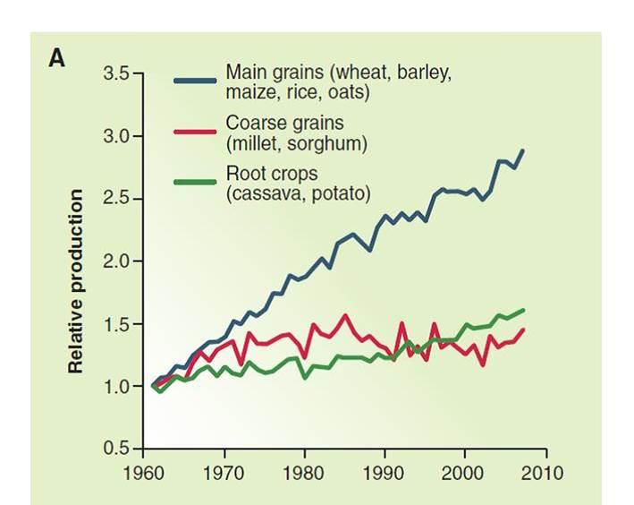 Aumento della produzione delle maggiori colture negli ultimi 50 anni.