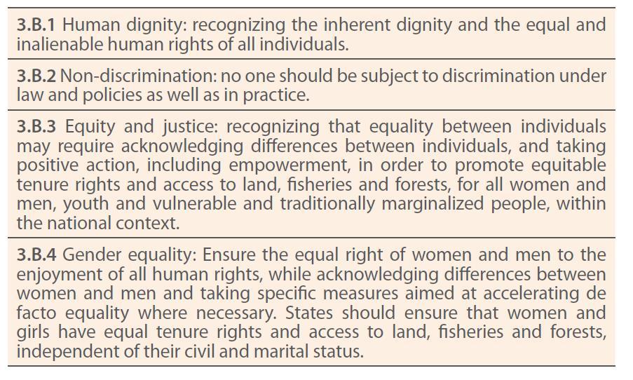 Principi per la promozione dell'equità e uguaglianza di genere nell'accesso alla terra