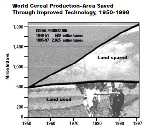 Effetti della green revolution