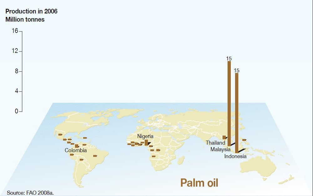 Maggiori produttori di olio di palma al mondo
