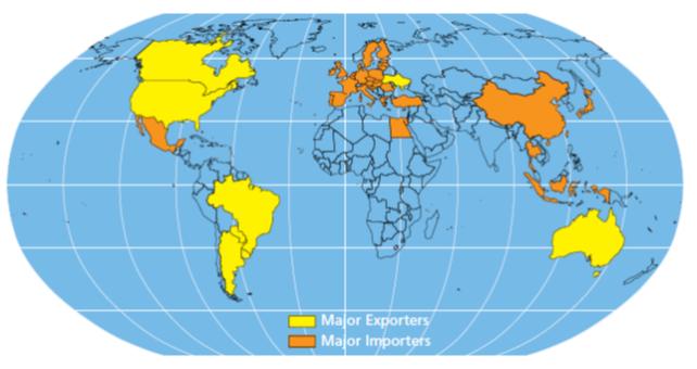 Paesi importatori ed esportatori di oli di semi