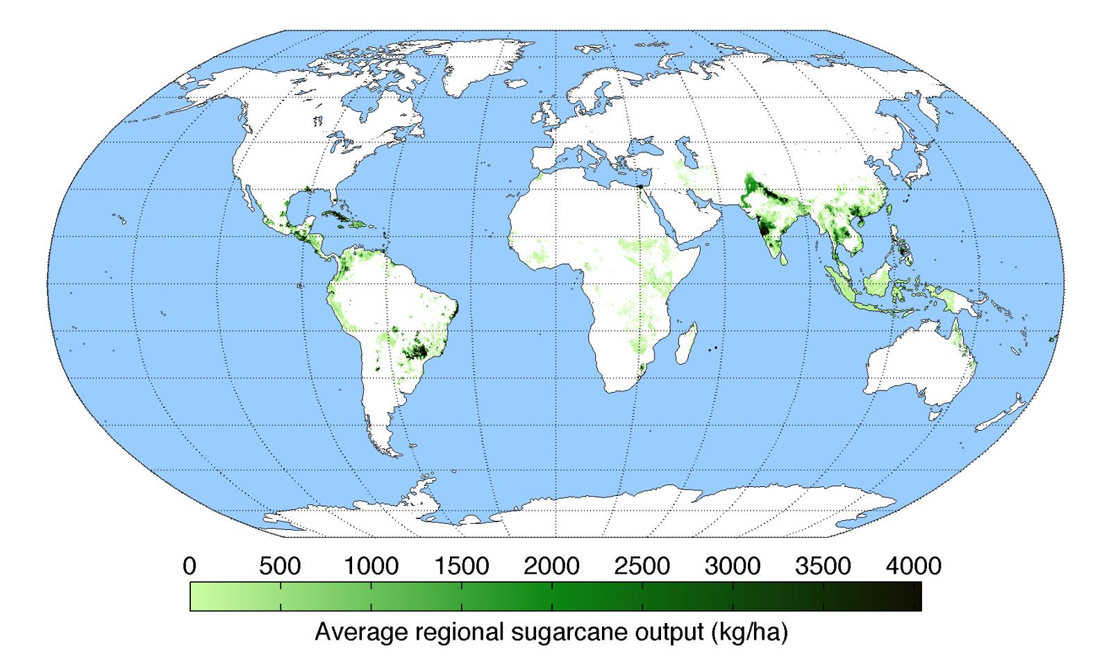 Distribuzione delle aree di produzione di zucchero di canna nel mondo