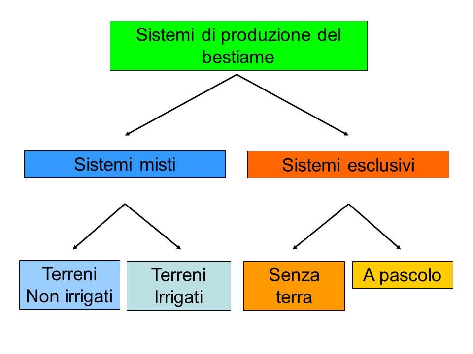 Classificazione dei sistemi di produzione del bestiame