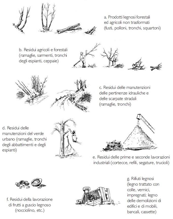 Tipologie di biomasse legnose utilizzabili a fini energetici