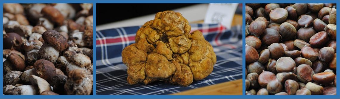 Esempi di prodotti forestali non legnosi italiani: porcini, tartufo bianco di Moncalvo (AT), castagne