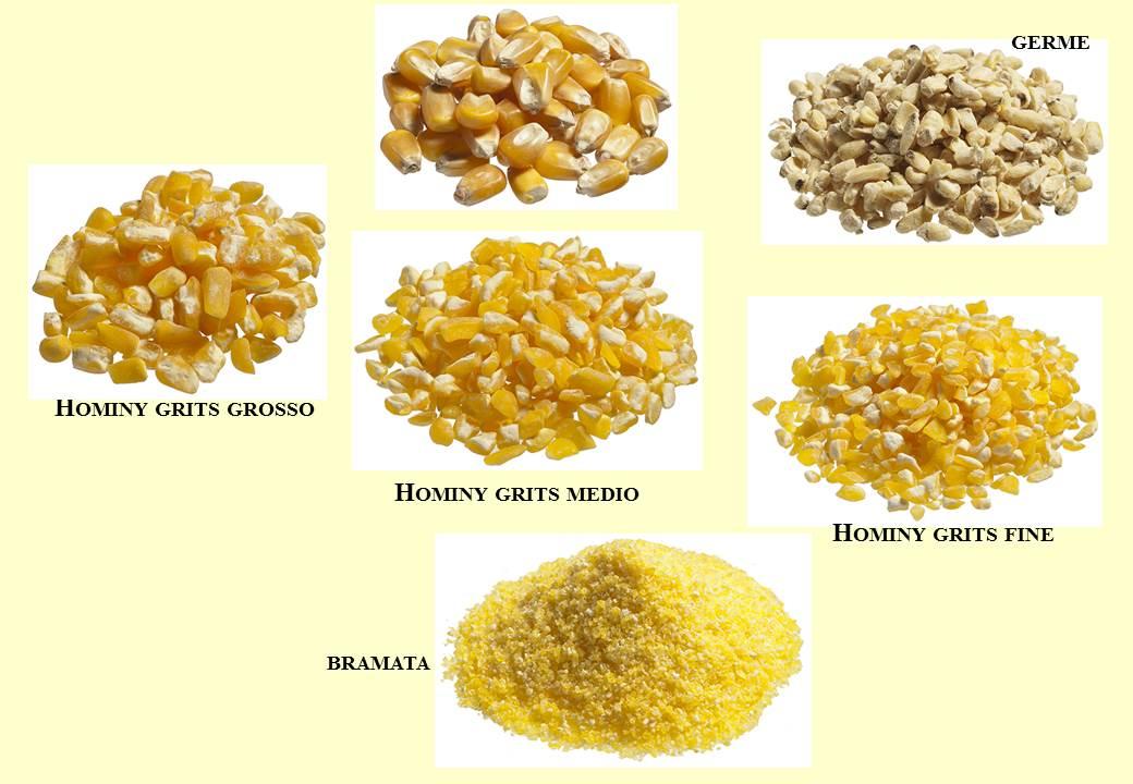 Frazioni ottenute dalla macinazione a secco della granella di mais