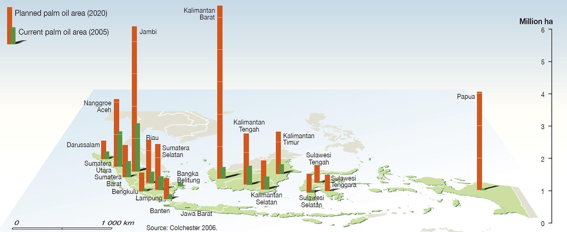 Aree previste per nuove piantagioni di palma da olio in Indonesia